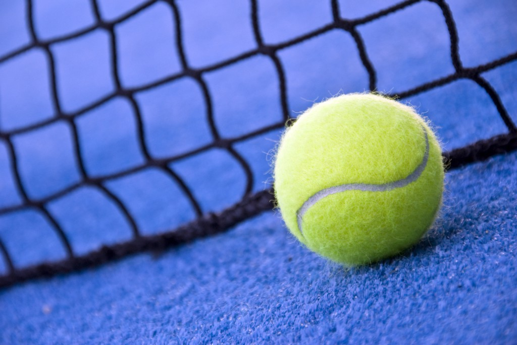 a paddle/tennis ball